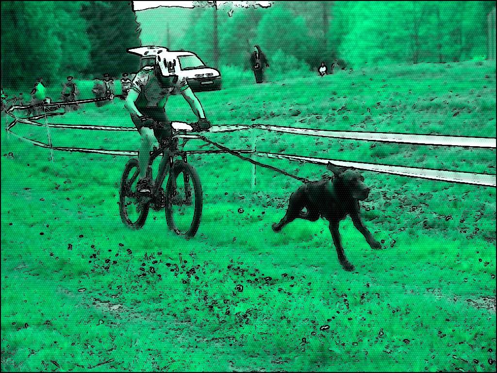 Cani VTT : faire du vélo avec son chien